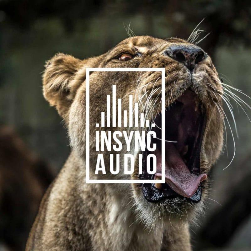 Insync Audio